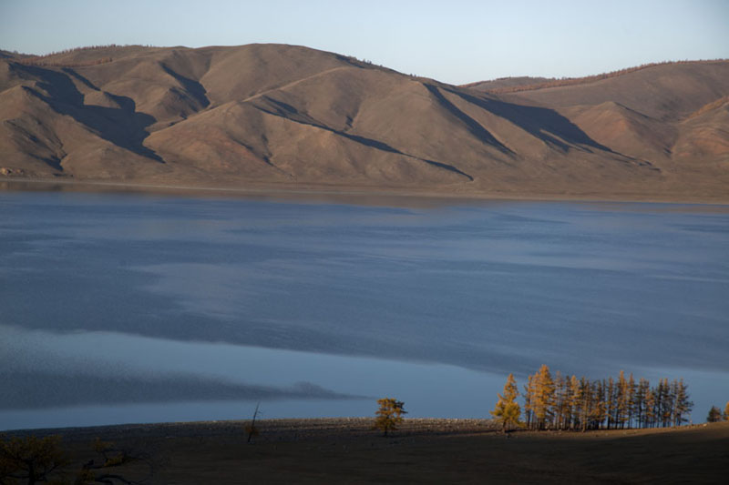 View of Zuum Nuur with group of trees in the foreground | Zuum Nuur | Mongolia