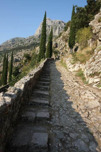 Foto van Stone path leading up to Kotor fortressKotor - Montenegro