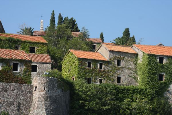 Foto van Close-up of houses of Sveti StefanSveti Stefan - Montenegro