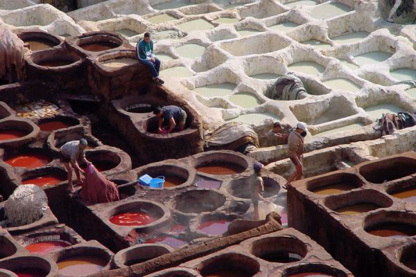 Foto van Marokko (Tanneries at Fes: working the skin)