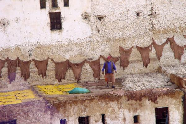 Picture of Part of the tanneries and the skins dryingFes - Morocco