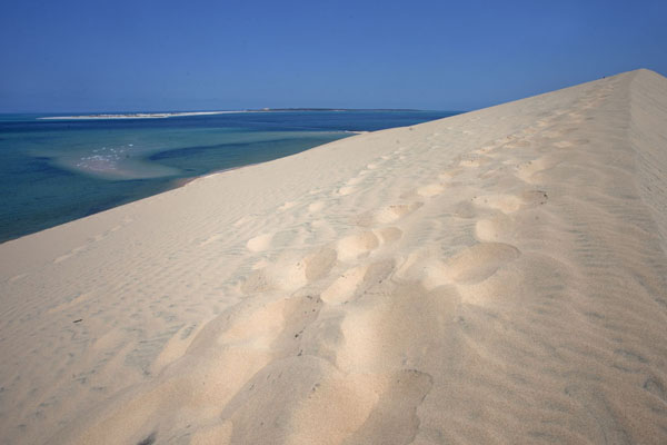 The top of one of the highest sand dunes with sea and sandbank in the background | Dunas de arena del isla Bazaruto | Mozambique