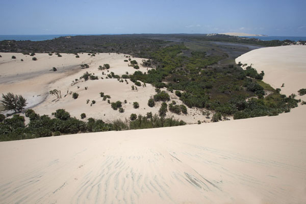 The interior of Bazaruto Island seen from the top of oen of the highest sand dunes | Dunas de arena del isla Bazaruto | Mozambique