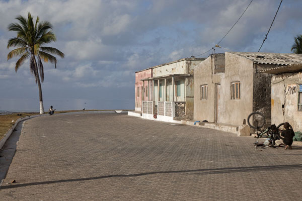 Picture of Ilha de Moçambique (Mozambique): Street with palmtree on the westside of Ilha de Moçambique