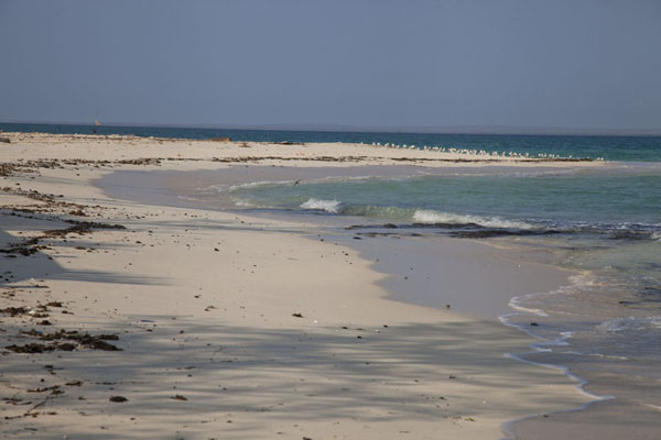 Foto van The northwestern point of Matemo islandMatemo - Mozambique
