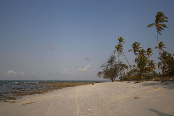 Picture of Beach on Matemo at the end of the day