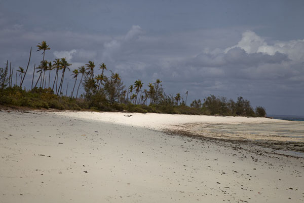 Beach on Matemo island at low tide | Matemo Island | Mozambique