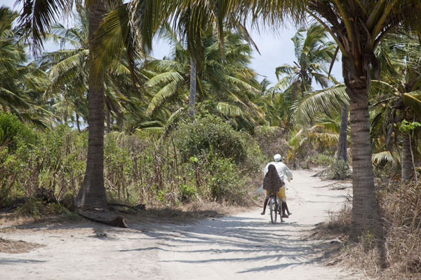 Cycling on the sandy path of Matemo island | Matemo Island | Mozambique