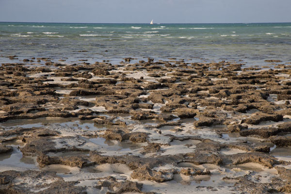 Low tide at the coast of Matemo | Matemo Island | Mozambique