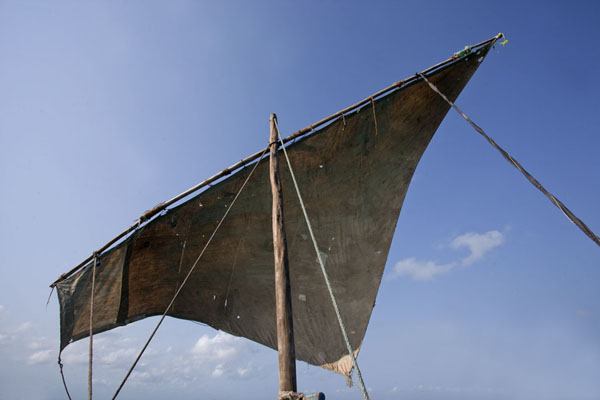 Looking up the sail of our dhow on the way from Matemo to Ibo island | Matemo Island | Mozambique