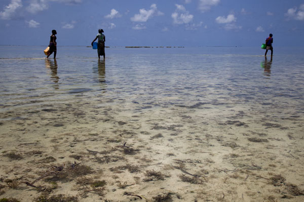 Three Ibo girls walking the shallow water near Mujaca at low tide | Promenade au phare de Mujaca | Mozambique