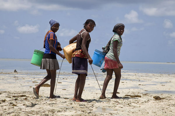 Picture of Three Ibo girls walking the coast at low tide on the hunt - Mozambique - Africa