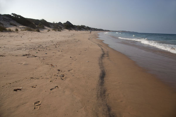 Long stretch of beach north of Tofo | Tofo Coastline | 莫三比克
