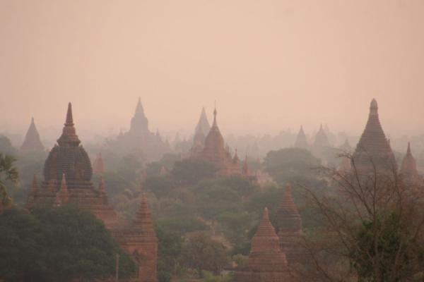 Foto di Some of the thousands of spires of temples in the Bagan areaMyanmar (Birmania) - Myanmar (Birmania)