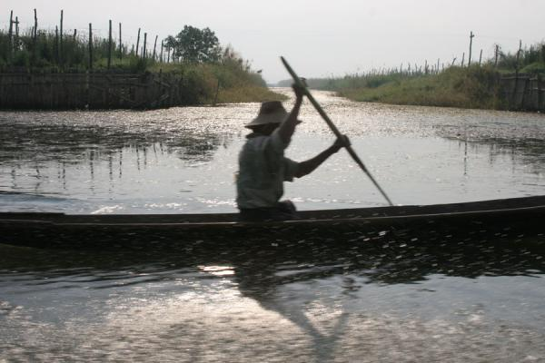 Picture of Rowing a boat on a canal near Inle Lake