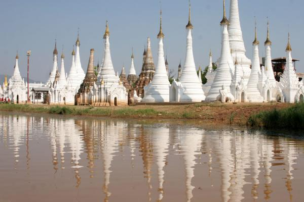 White stupas reflected in the muddy waters of Inle Lake | Inle Lake | Myanmar (Birmanie)