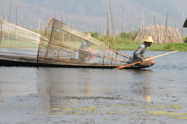 Picture of Fisherman on the look-out for fish on Inle Lake - Myanmar (Burma) - Asia
