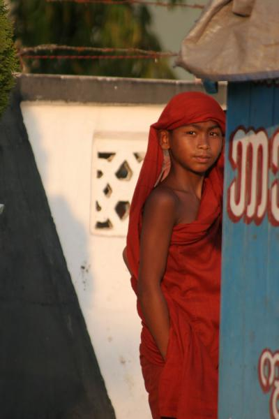 Picture of Myanmar monks (Myanmar (Burma)): Young Burmese monk in the late afternoon sun