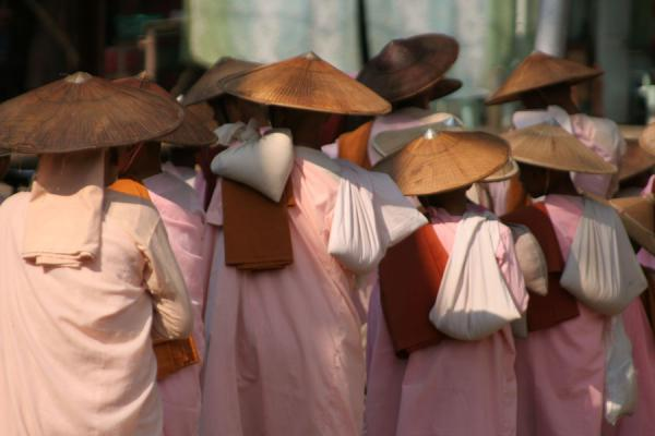 Foto di Burmese nuns lining up for offerings in the early morning in KathaMyanmar (Birmania) - Myanmar (Birmania)