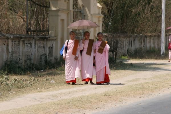 Picture of Burmese nuns walking the streetsMyanmar (Burma) - Myanmar (Burma)