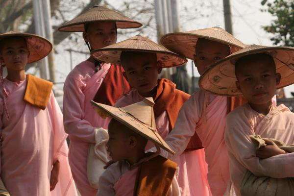 Foto di Burmese nuns with their typical pinkish-red robe and straw hatsMyanmar (Birmania) - Myanmar (Birmania)