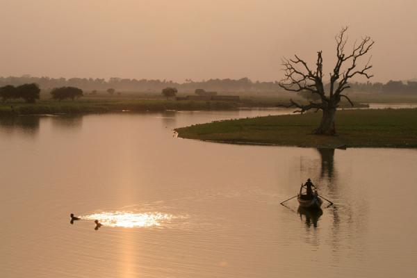 Foto de Lonely tree close to U Bein Bridge, AmarapuraMyanmar (Birmania) - Myanmar (Birmania)