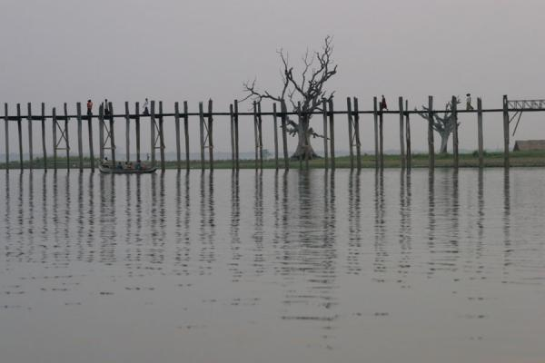 Foto di Tree and U Bein Bridge defininf the horizonMyanmar (Birmania) - Myanmar (Birmania)