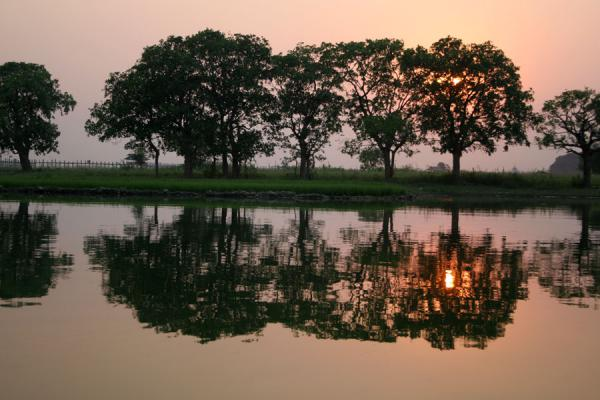 Trees reflected in Taugthaman Lake at sunset | Royal Cities | Myanmar (Burma)