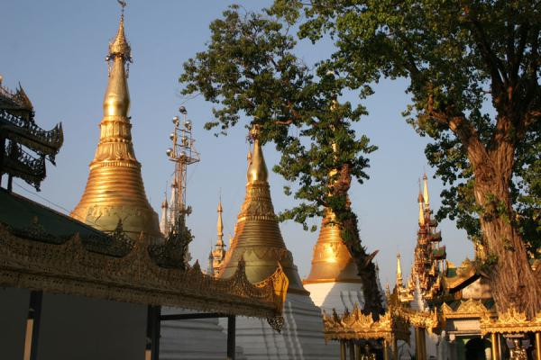 Some of the many smaller stupas at Shwedagon Pagoda | Shwedagon Pagoda | Myanmar (Burma)
