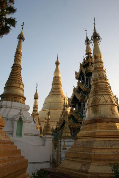 Some of the smaller stupas of Shwedagon Pagoda | Shwedagon Pagoda | Myanmar (Burma)