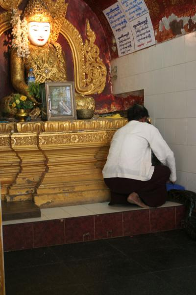 Picture of Caretaker guiding a python back to its resting place next to BuddhaSnake Pagoda - Myanmar (Burma)