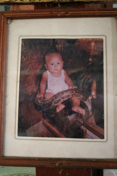 Picture of Snake Pagoda (Paleik) (Myanmar (Burma)): Baby with python, picture hanging on the walls of the Snake Pagoda