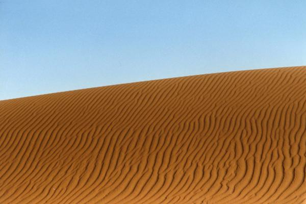 Picture of Namib Desert Details (Namibia): Profile of sand dune near Sossusvlei