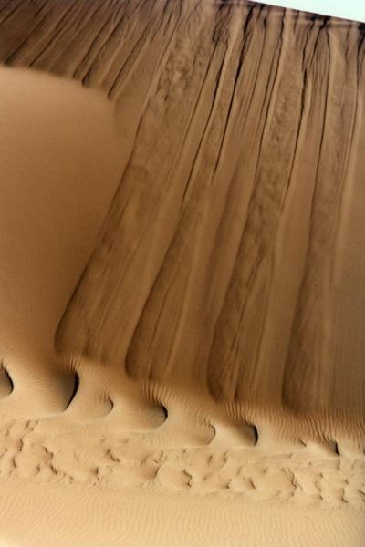 Picture of Small sanddunes on the sandduneNamib Desert - Namibia