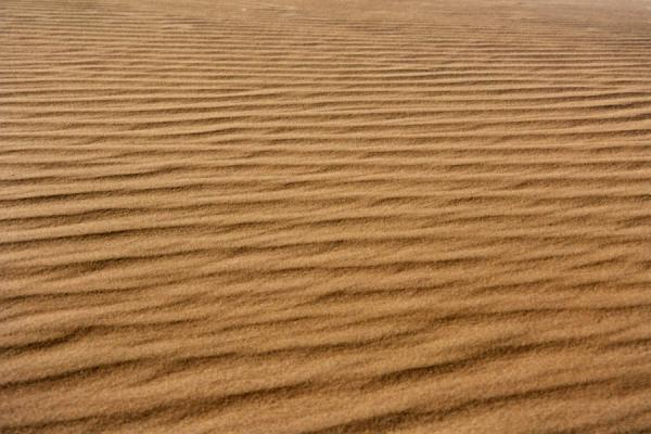 Picture of Namib Desert Details (Namibia): Close up of sand dune near Sossusvlei