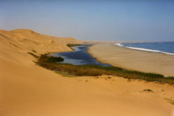 Picture of On the breakline of endless sea and endless sandSandwich Harbour - Namibia