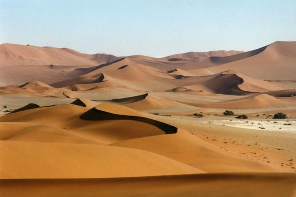 Picture of Vantage point from one of the higher dunesSesriem sanddunes - Namibia
