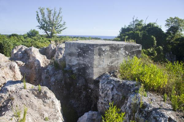 Foto di Japanese bunker on top of Command RidgeAiwo - Nauru