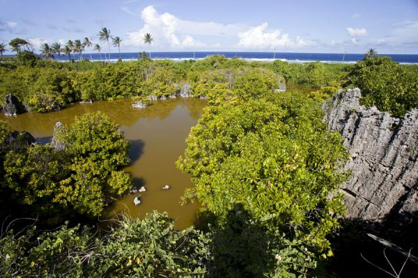Foto van View of one of the lagoons from the top of a coral rock with the surf of the Pacific in the distanceAnabar - Nauru