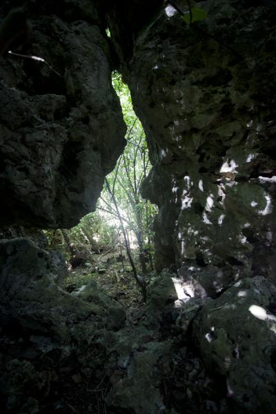 Opening in a limestone wall, giving access to yet more forest | Hole in the wall hike | Nauru