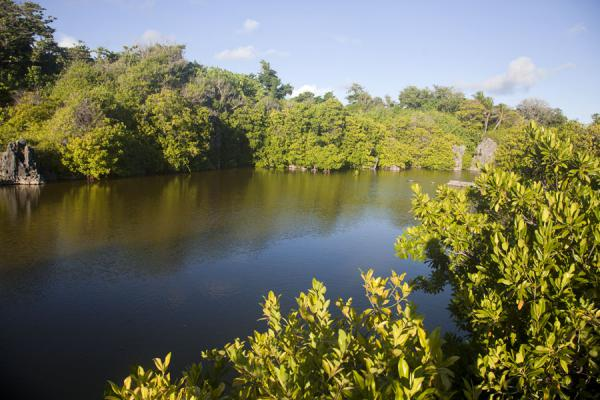One of the lagoons on the northeast coast of Nauru | Nauru Coast | Nauru
