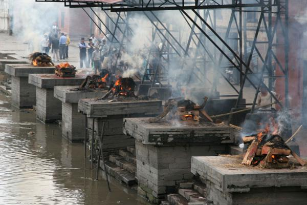 Picture of Burning corpses on pyres at six platforms at Pashupatinath