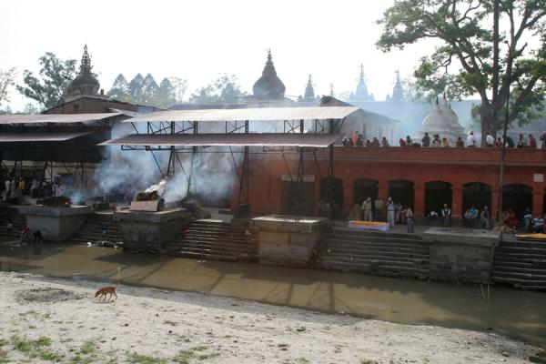 Foto van Holy Bagmati river, some platforms with burning corpses, and spectators at Pashupatinath - Nepal - Azië