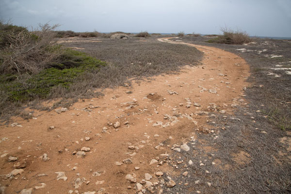 Track leading to the northwest point of Aruba, Arashi | Arashi Noordwestpunt | Nederlandse Antillen