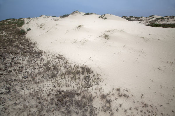 Foto de White sand dunes at Arashi, the northwest point of ArubaArashi - Antillas holandesas