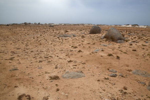 Foto van Dry and barren landscape of the northwestern area of Aruba - Nederlandse Antillen - Amerika