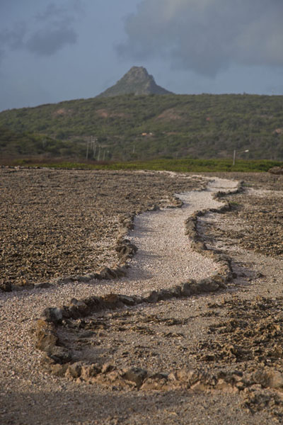View of Christoffelberg from Shete Boka National Park | Christoffelberg | Netherlands Antilles
