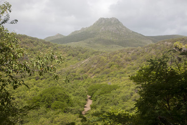 Picture of Christoffelberg (Netherlands Antilles): Christoffelberg dominating the surrounding landscape of northern Curacao