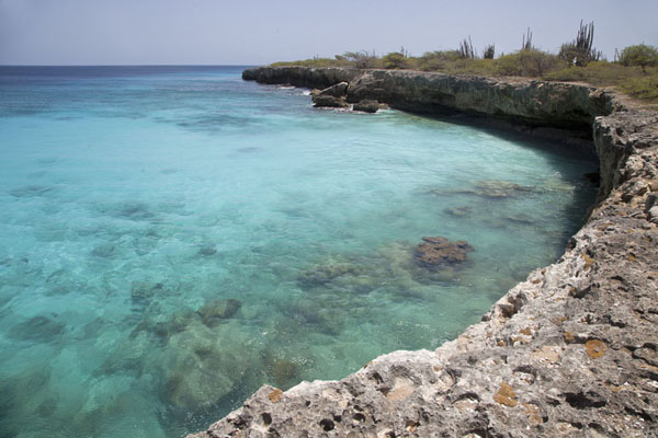 Foto di Turquoise waters in a rocky bay near Slagbaai, on the western side of Bonaire - Antille Olandesi - America