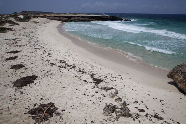 Foto de Playa Chikitu on the east coast of the islandWashington Slagbaai National Park - Antillas holandesas